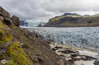 lodowiec Vatnajökull - jęzor Svínafellsjökull
