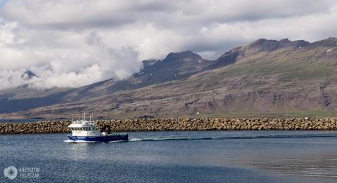port w Djúpivogur