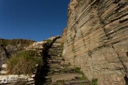 Whaligo steps